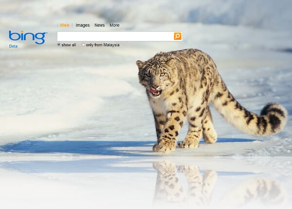 Other than that now with bing you have a new way of searching look